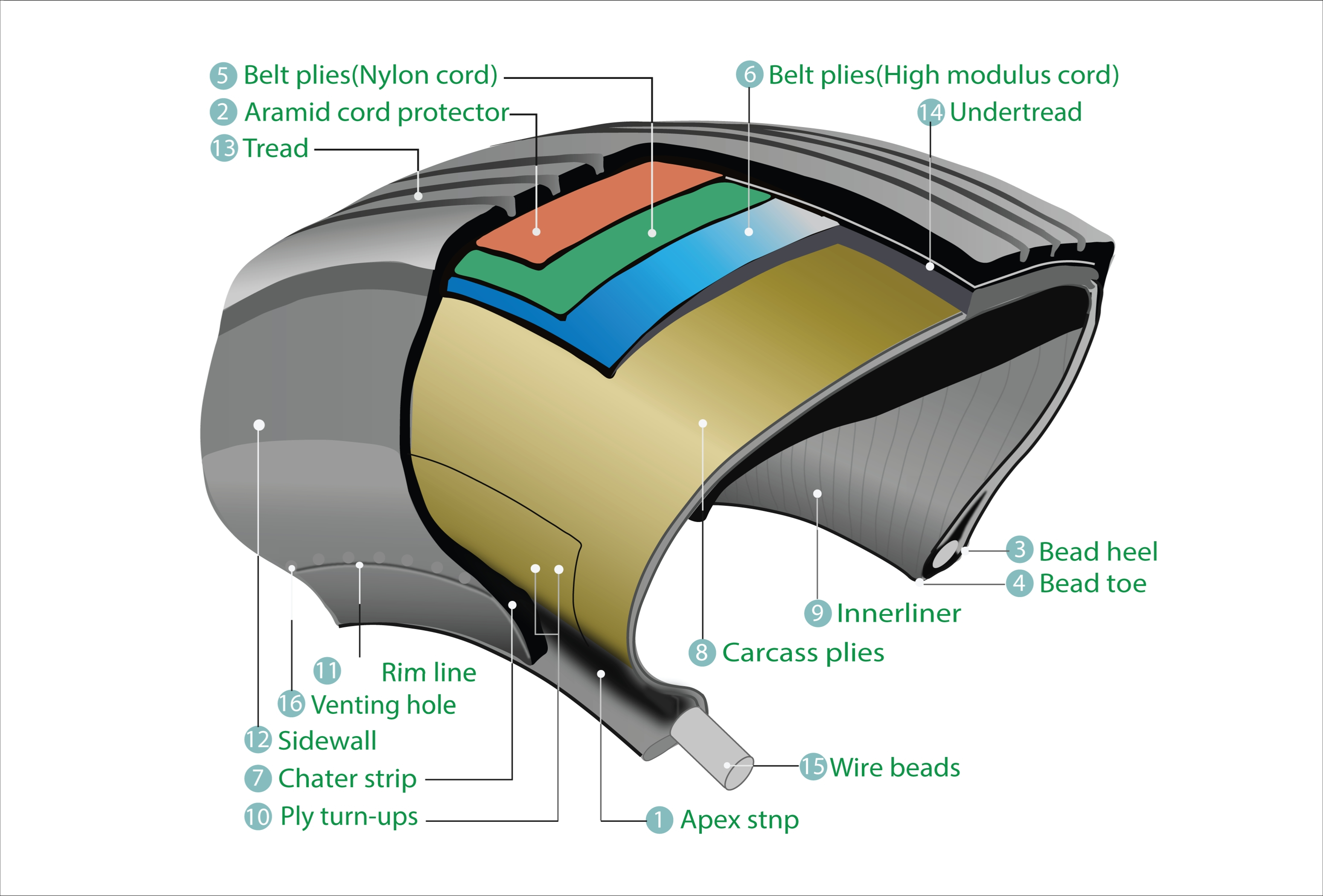 Image shows the different layers of a tire